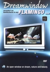 Flamingo's DVD in HD kwaliteit